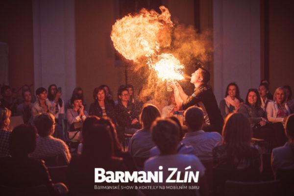 barmanizlin_9